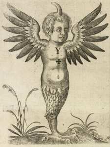 Monstre multiforme. Fortunio Liceti 1634