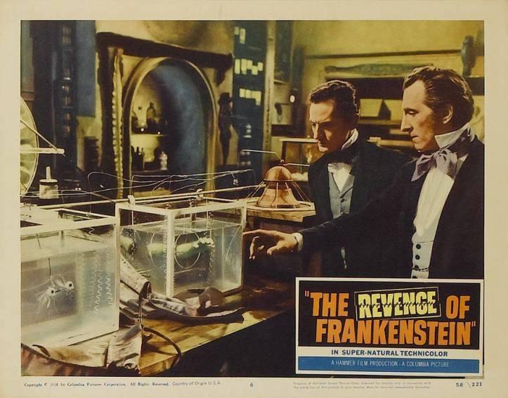 Revenge6